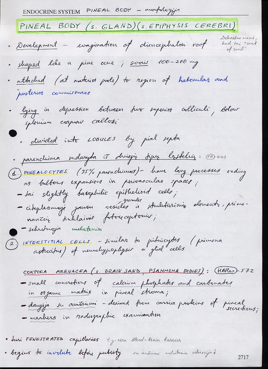 Viktor\'s Notes – Pineal Region Tumors